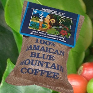Blue Mountain Kaffee Jamaikatour1