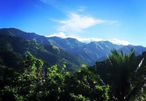 Jamaika Beach und Tropenwald 6