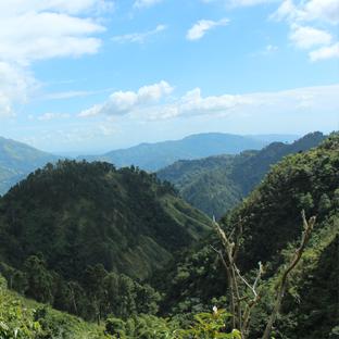 Urlaub auf Jamaika Blue Mountains