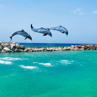 Urlaub auf Jamaika Ocho Rios