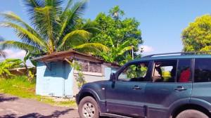 Wetter Jamaika