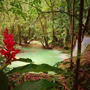 Jamaikaurlaub 8
