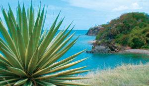 Jamaika und Kuba Kreuzfahrt