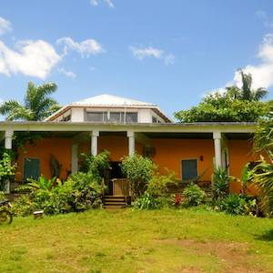Guesthouses in Port Antonio