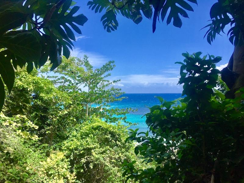 Jamaika öffnet Grenzen