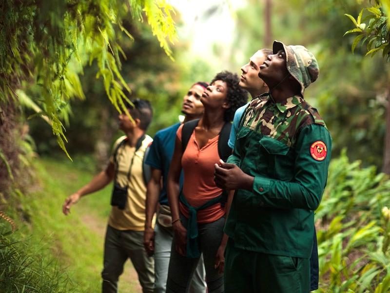Wandern in Jamaika