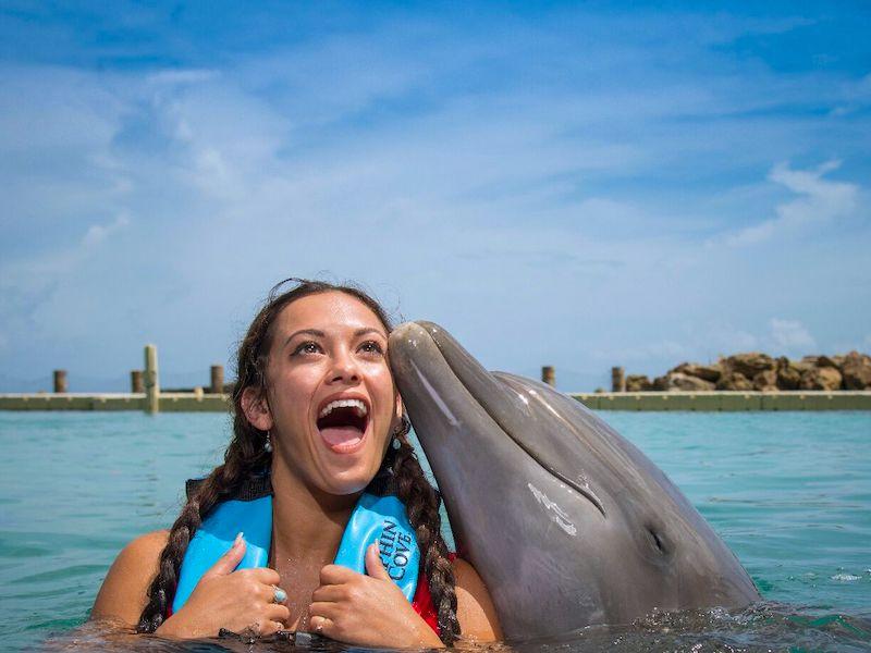 Dolphin Cove Jamaika
