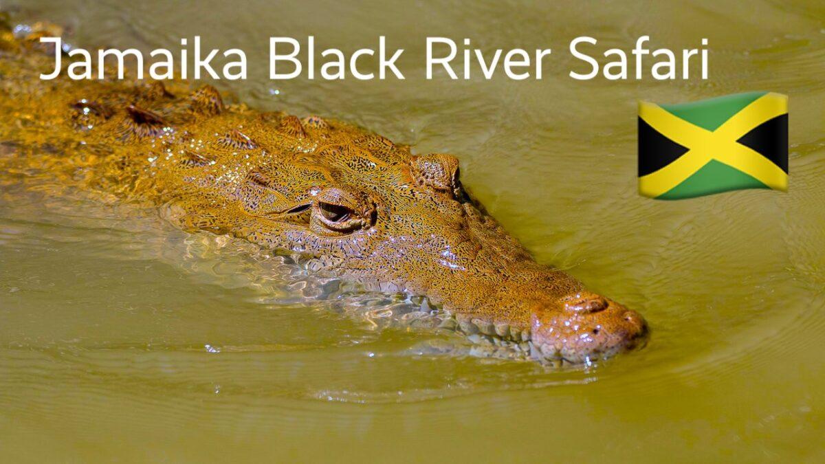Jamaika Black River Safari