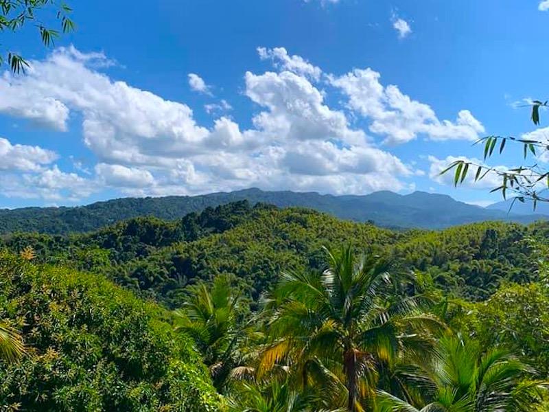 Wandertouren in Jamaika