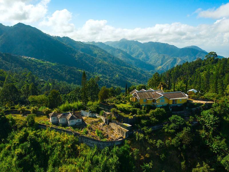 Jamaika Wandern Blue Mountains